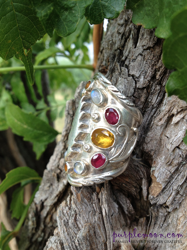 Family Silver Intergalactic Space Travel Ring