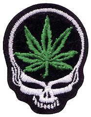 P-SYF-leaf.jpg